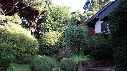 Maison d'une passionnée de plantes au Pays Basque